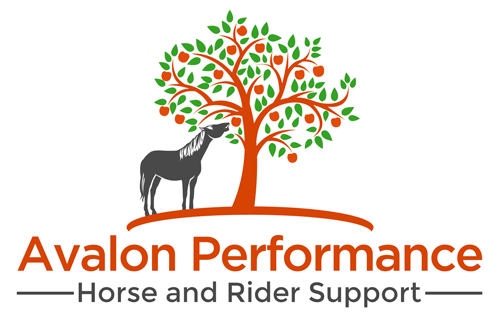 Avalon Performance Horse