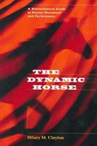 Dynamic-Horse