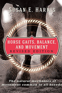 Horse-Gaits-Balance-Movement