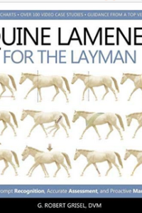 Equine-lameness